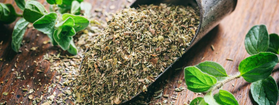 Fresh and dried oregano on a wooden surface